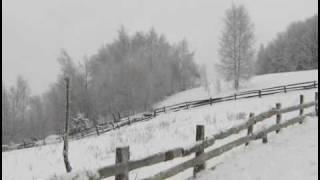 getlinkyoutube.com-Zana Vejte snegovi