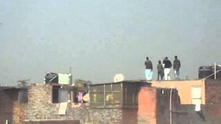 getlinkyoutube.com-Gole Pigeon Race (200 Pigeons), delhi, India