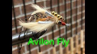 Avalon Fly