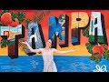 Top things to do in Tampa Bay | Florida travel guide