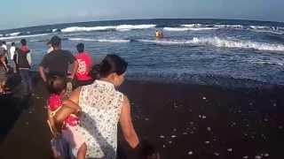 getlinkyoutube.com-Video Detik detik Evakuasi Korban Tenggelam di Pantai Purnama (Beach Accident)