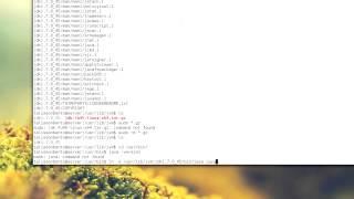 Instalando java no linux