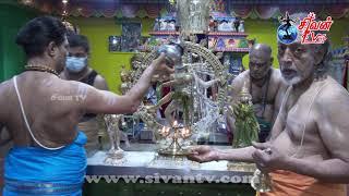 சுவிற்சர்லாந்து சூரிச் அருள்மிகு சிவன் கோவில் ஏழாம் நாள் பகல்த்திருவிழா ஆனி உத்தரம்