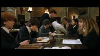 getlinkyoutube.com-Best Ron and Hermione Scenes 1-7 Part 1