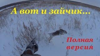 getlinkyoutube.com-Охота на зайцев - А вот и зайчик!))