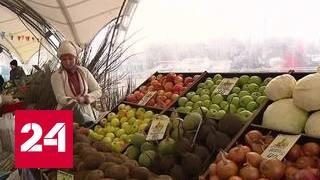 Качество по разумным ценам: в Москве открываются ярмарки продуктов из регионов