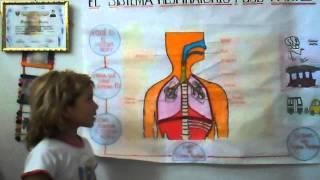 getlinkyoutube.com-Sistema Respiratorio - Nivel Primaria  - Muriel Esparza