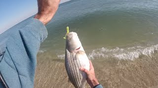 "getlinkyoutube.com-New Jersey Surf Fishing Striped Bass and Bluefish ""Epic Blitz"" December 4, 2015"