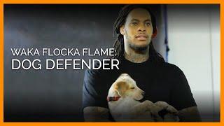 Waka Flocka prend la défense des chiens pour l'association PETA