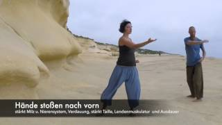 getlinkyoutube.com-Qi Gong Shibashi die 18 Figuren/ Übungen der Harmonie 18 movements