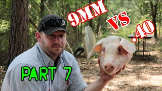 getlinkyoutube.com-9mm vs  40 cal: Pig Head Test