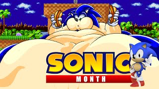 getlinkyoutube.com-Sonic The Hedgehog 2 XL (SONIC MONTH)