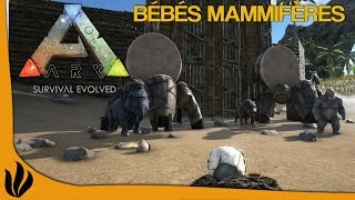 getlinkyoutube.com-[FR] ARK: Survival Evolved - Bébés mammifères