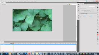 getlinkyoutube.com-How to import and animate over video in Adobe Flash CS5