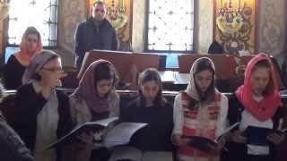 Милость мира в исполнении Воскресной школы при Патриаршем Подворье
