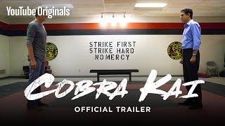 Official Cobra Kai Trailer - The Karate Kid saga continues