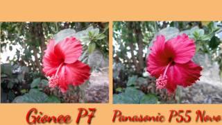getlinkyoutube.com-Gionee P7 Vs Panasonic P55 Novo Camera Review