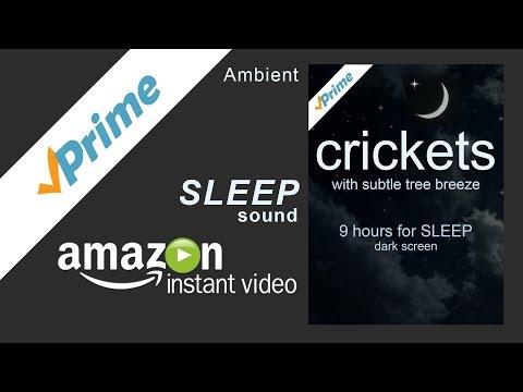 Crickets 9 hour sleep Prime