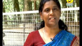 getlinkyoutube.com-krishidarshan Malayalam 16 12 13