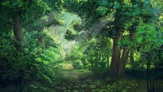 getlinkyoutube.com-1 Hour of Forest Music