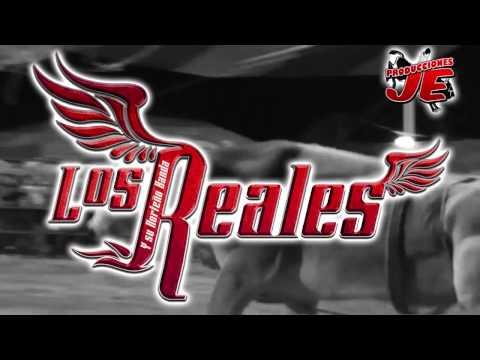 Promo!!! Torneo De Toros De Reparo, Nopala De Villagran, Hidalgo 2014