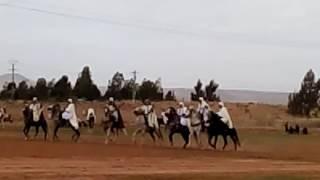 getlinkyoutube.com-طعم سيدي مخلوف 20/10/2016