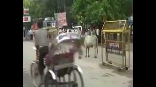 getlinkyoutube.com-WhatsApp Funny Video for INDIA