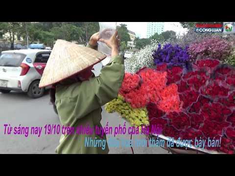 Hà Nội: Sôi động thị trường hoa tươi dịp 20/10