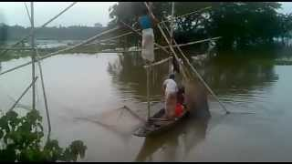getlinkyoutube.com-Catching fish in Sylhet