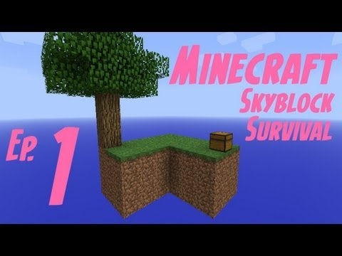 Minecraft: Skyblock Survival Ep1- Don't Look Down