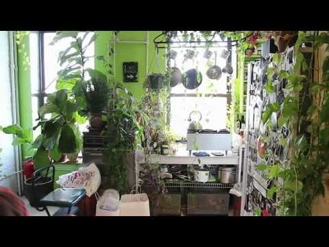 How to Green Your Home (Part 1): Build an Indoor Vertical Garden