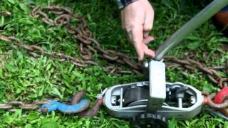 getlinkyoutube.com-Pulling the Tree Down with Chain and Winch