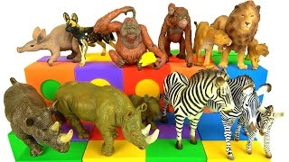 getlinkyoutube.com-Learning Learn Wild Animals - Zoo Animals 🌋Schleich Volcano with Fire! Educational