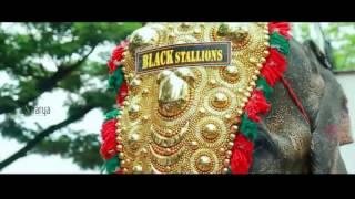 getlinkyoutube.com-black Stallions pazhanji