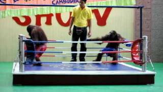 getlinkyoutube.com-Orangutan Boxing