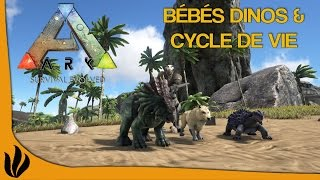 getlinkyoutube.com-[FR] ARK: Survival Evolved - Bébés Dinos & Cycle de vie