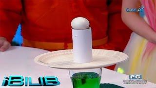 getlinkyoutube.com-iBilib challenge: Shoot that egg in one move!