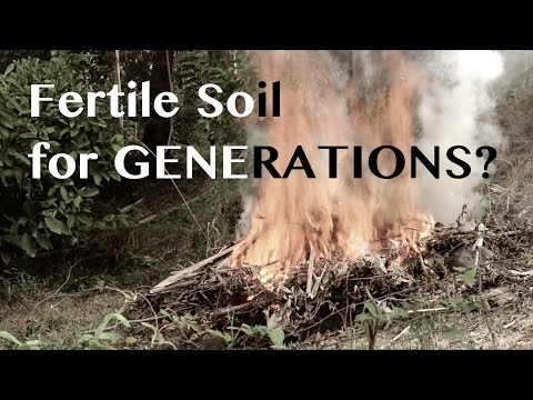 Totally Ripping off the Skillcult Video on Biochar