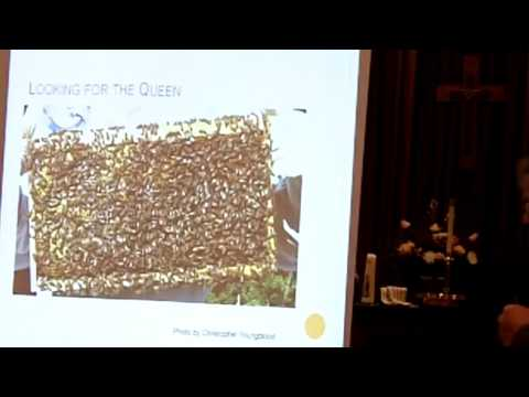 Bee Biology 101 for Beekeepers