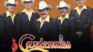getlinkyoutube.com-mexican music - Norteñas de México