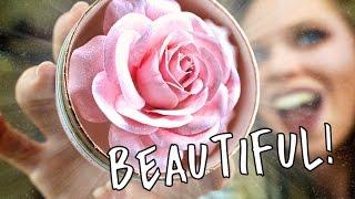 getlinkyoutube.com-LANCOME BLUSH LA ROSE  POWDER!- AKA THE WORLDS MOST BEAUTIFUL HIGHLIGHT?