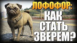 getlinkyoutube.com-GTA 5 - Как Играть за Животных? (Лофофоры) #4