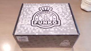 getlinkyoutube.com-Unboxing 2 Black Friday GameStop Funko Boxes