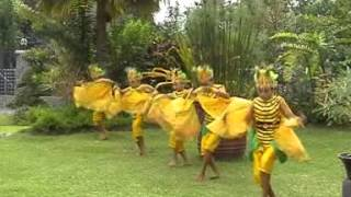 getlinkyoutube.com-Tari Kupu Kupu - Tari Tradisional - Indonesian Dance