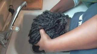 For the Newbie's: So you want to wash your locs?