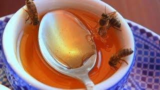 getlinkyoutube.com-كيف تعرف العسل الأصلي ؟؟