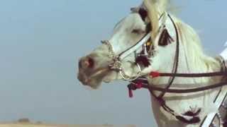 getlinkyoutube.com-شيلة مرخصة الريال   كلمات احمد السديري