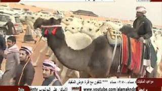 getlinkyoutube.com-منقية ناصر بن قريع أل بريك الدوسري لعام 1433هـ