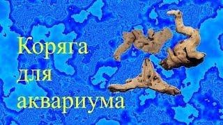 getlinkyoutube.com-Коряга для аквариума