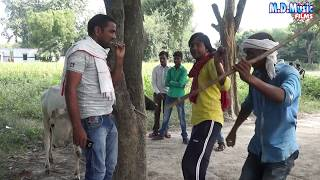 आप इस वीडियो को देख कर खूब हसे  - खेतवा त खा गइले  संडवा  पड़वा  - Parmod yogiya